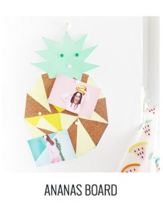 ananas-board-3